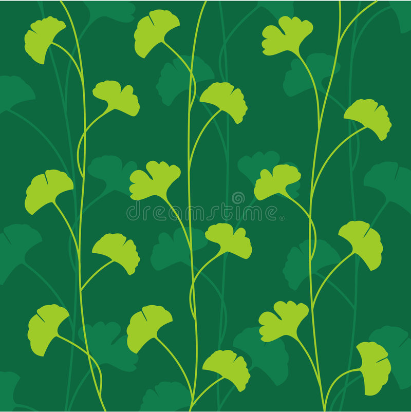 Vector Ginko Leaves stock image