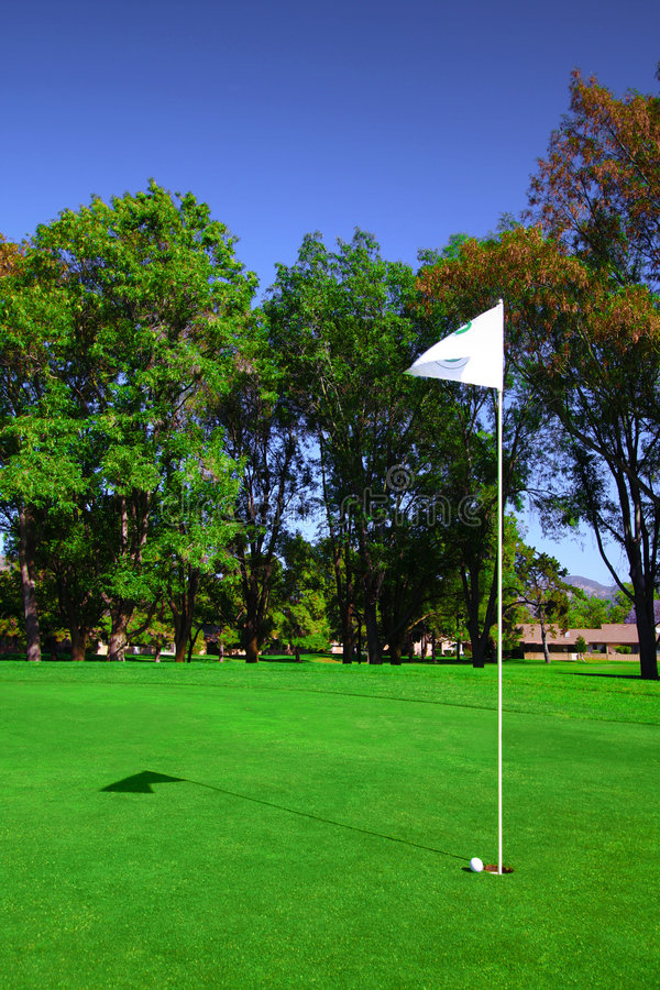 Vector Golf Course Flag stock illustration
