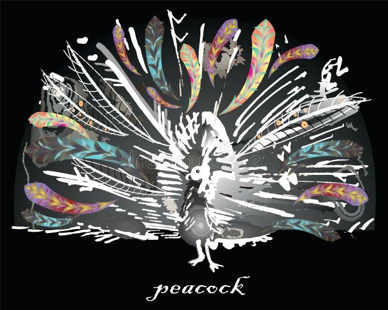 Vector grafisch gestileerd beeld van pauw stock illustratie