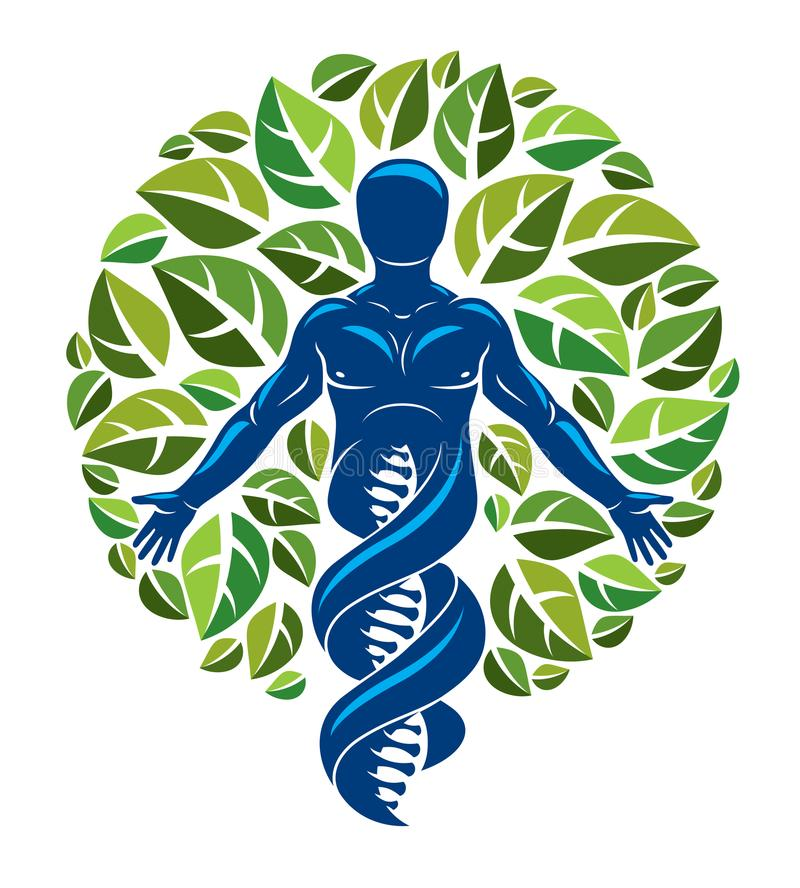 Vector graphic illustration of muscular human depicted as DNA st vector illustration