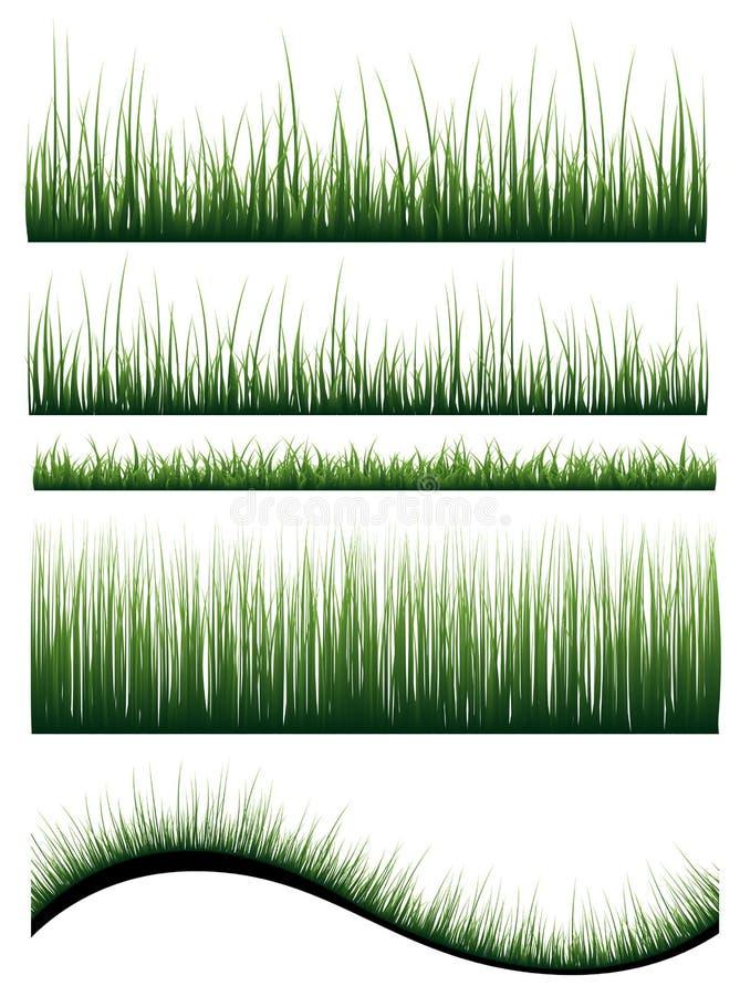 Vector gras vector illustratie