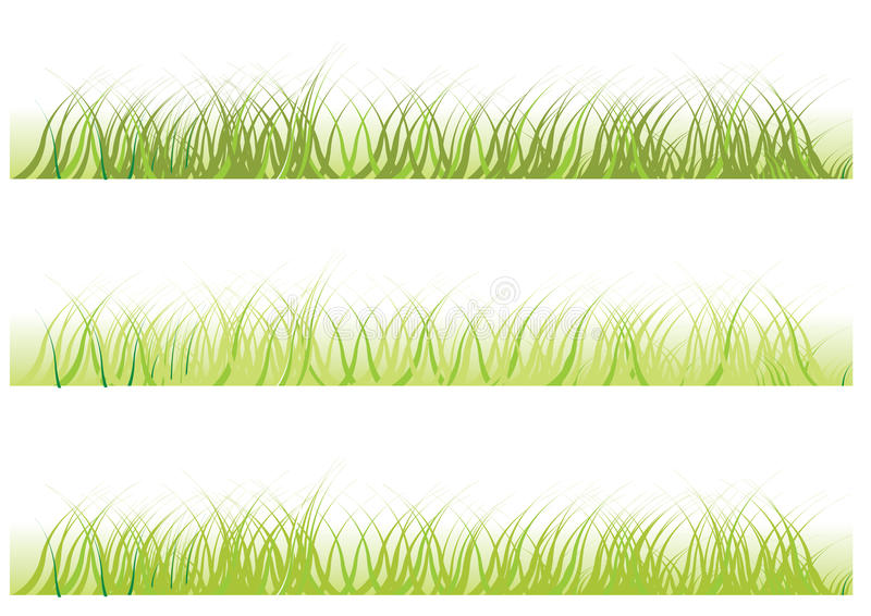 Vector grass vector illustration