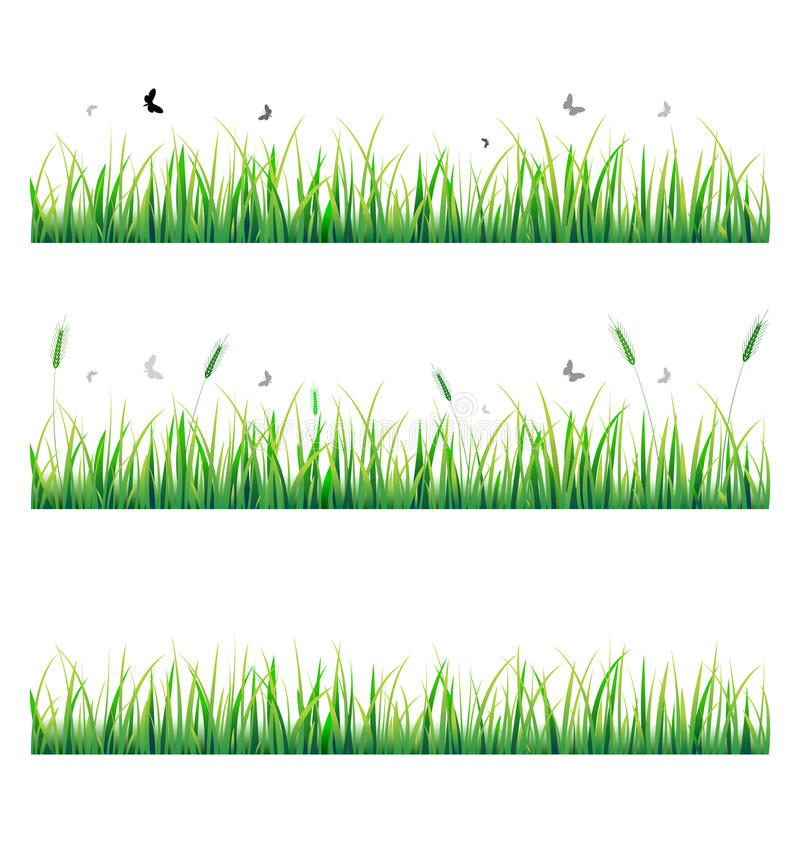Download Vector Grass With Butterfly Stock Vector - Image: 18929091