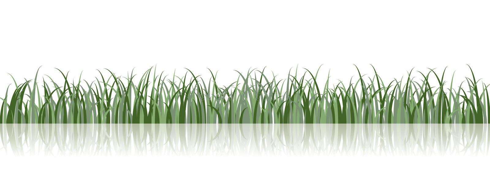 Vector Grass Illustration royalty free stock image