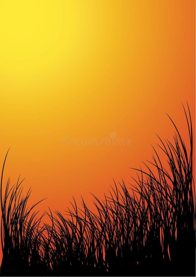 Vector grassilhouet stock illustratie