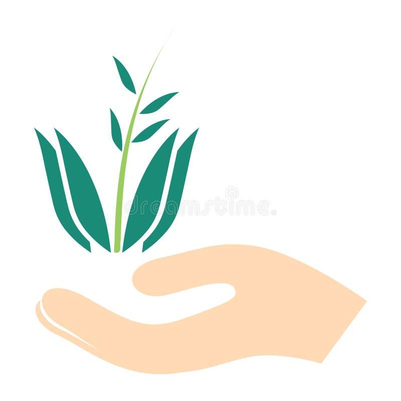 Vector green ecology sign, green environment illustration symbol - eco icon. vector illustration