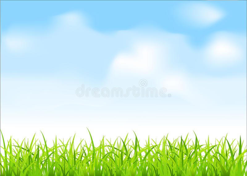 Vector green grass and blue sky stock illustration