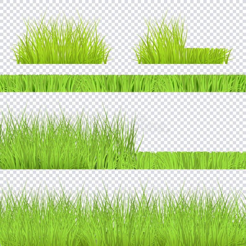 Vector green grass border for summer landscape. Vector green grass bush, borders set for summer landscape design on transparent background. Natural decoration vector illustration