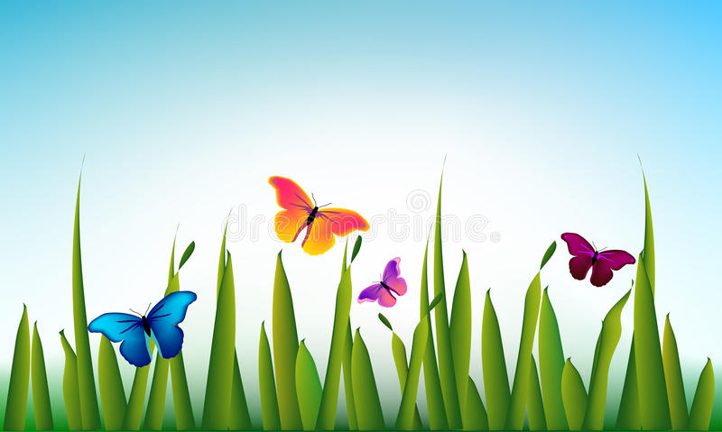 Vector green grass with the butterflies stock illustration