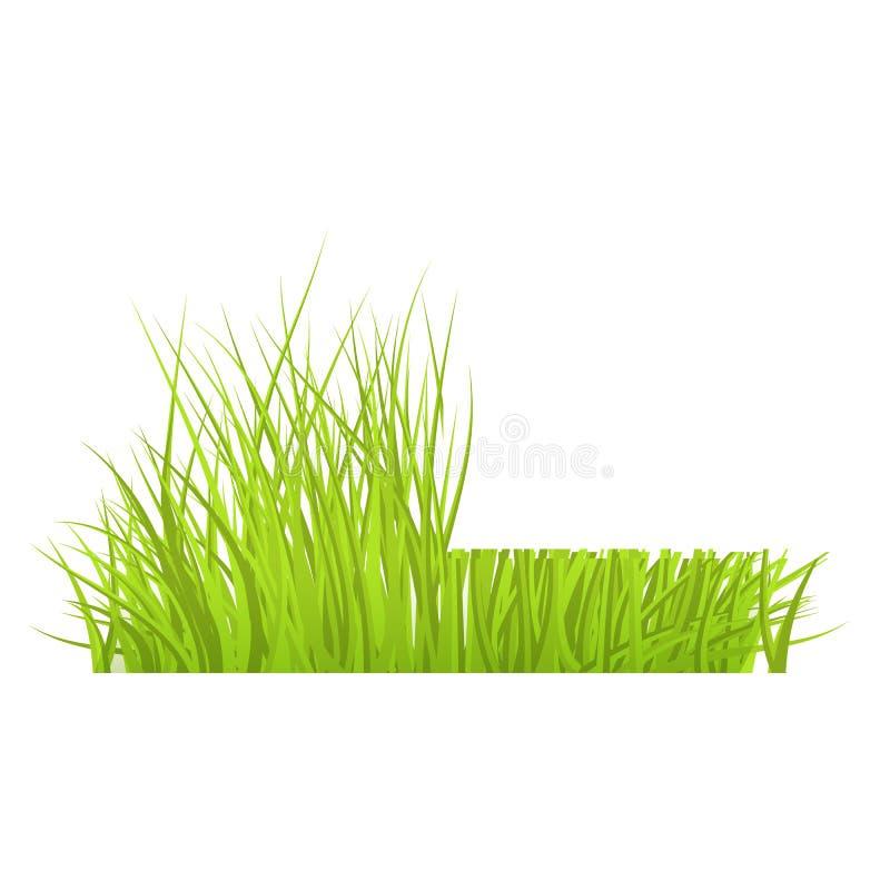 Vector green grass border for summer landscape. Vector green grass cut border for summer landscape design. Natural decoration element for parks, gardens or rural vector illustration