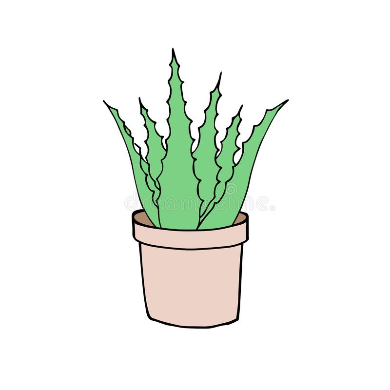 Vector green hand drawn aloe vera in pot stock illustration