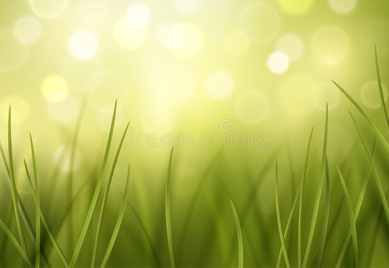 Vector green lawn vector close-up with bokeh effects in the background - environment or ecology wallpaper.  stock illustration
