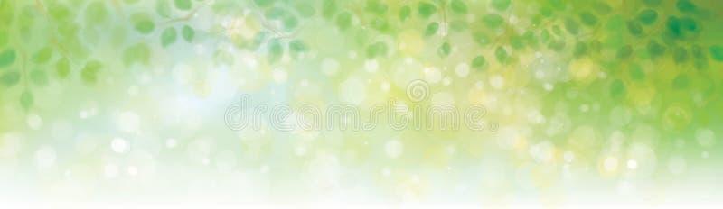 Vector green leaves background. Vector green leaves border on sunshine background stock illustration