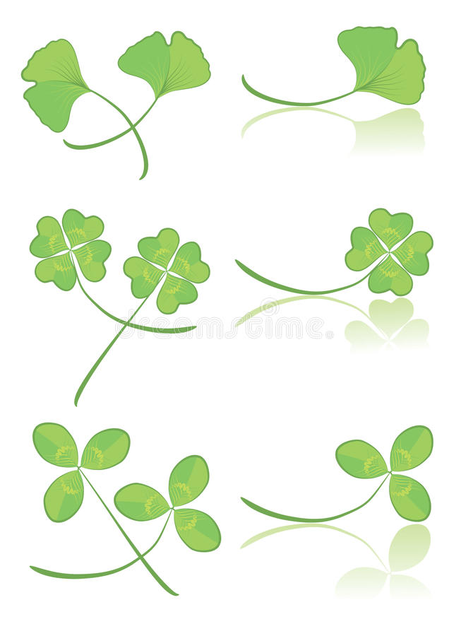 Vector green leaves.Floral royalty free stock photos