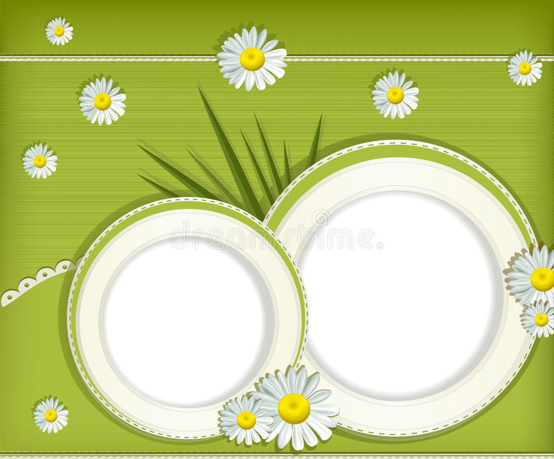 Vector greeting card with daisies. And abstracts background stock illustration