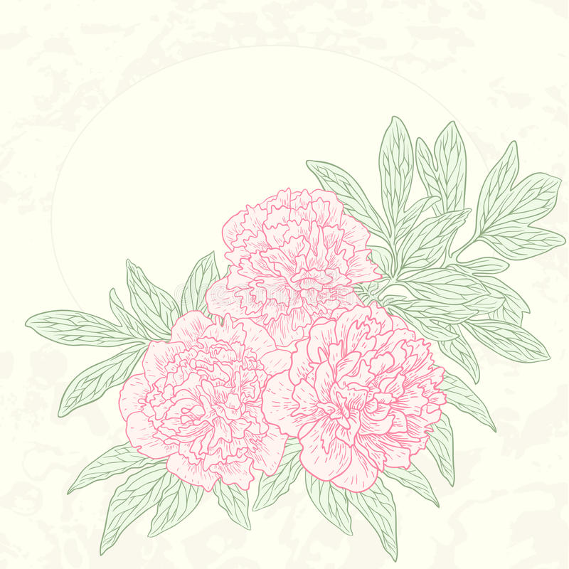 Vector greeting card with peonies. stock illustration
