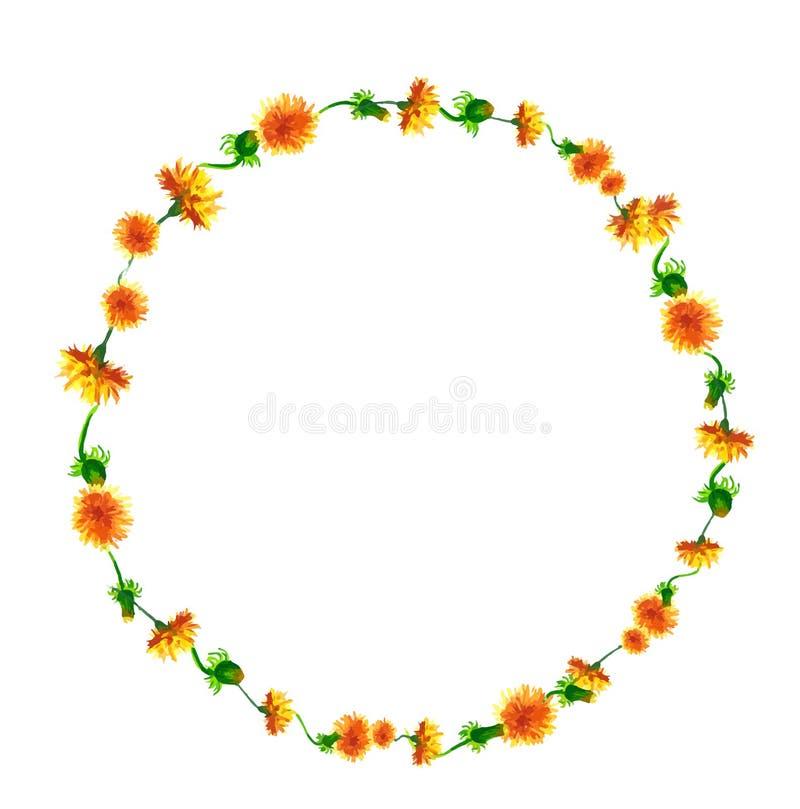 Vector a grinalda, quadro do círculo com as flores da aquarela, fuzzies do dente-de-leão, mão tirada para o projeto do casamento, ilustração royalty free