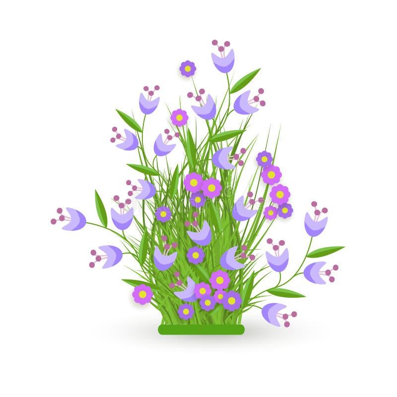 Vector groen gras, de struik van korenbloembloemen royalty-vrije illustratie