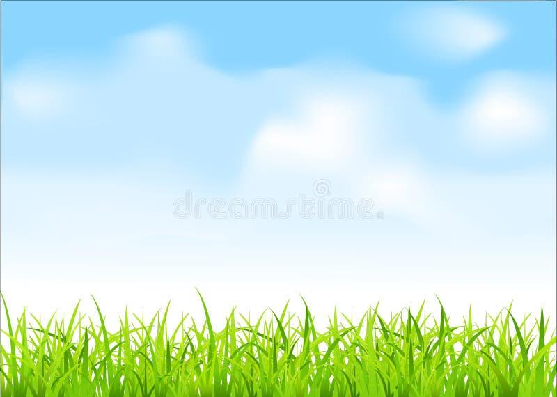 Vector groen gras en blauwe hemel stock illustratie
