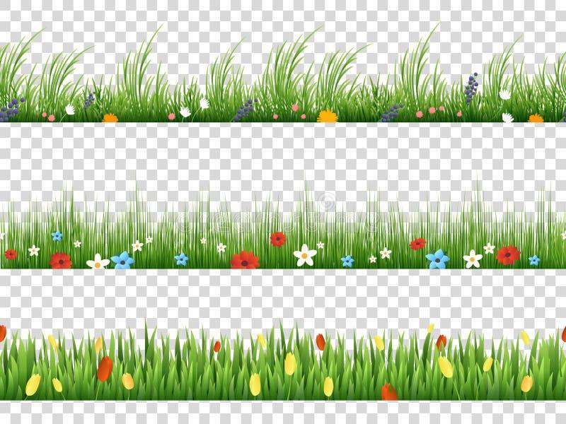 Vector groene gras en de lente de grenspatronen van de bloemenaard op transparante achtergrond vector illustratie