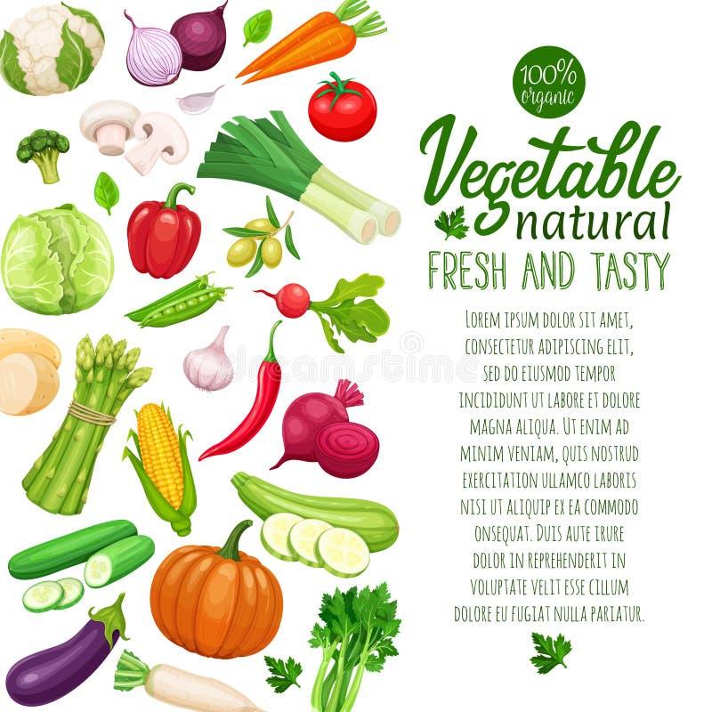 Vector groenten vector illustratie