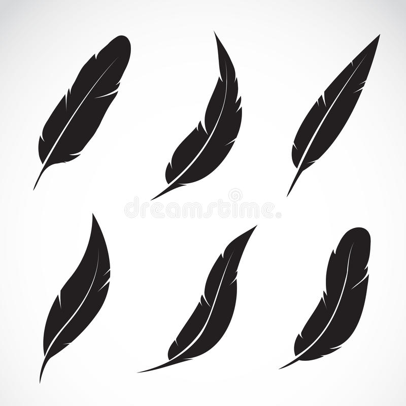 Free Vector Group Of Feather Royalty Free Stock Photos - 39495538