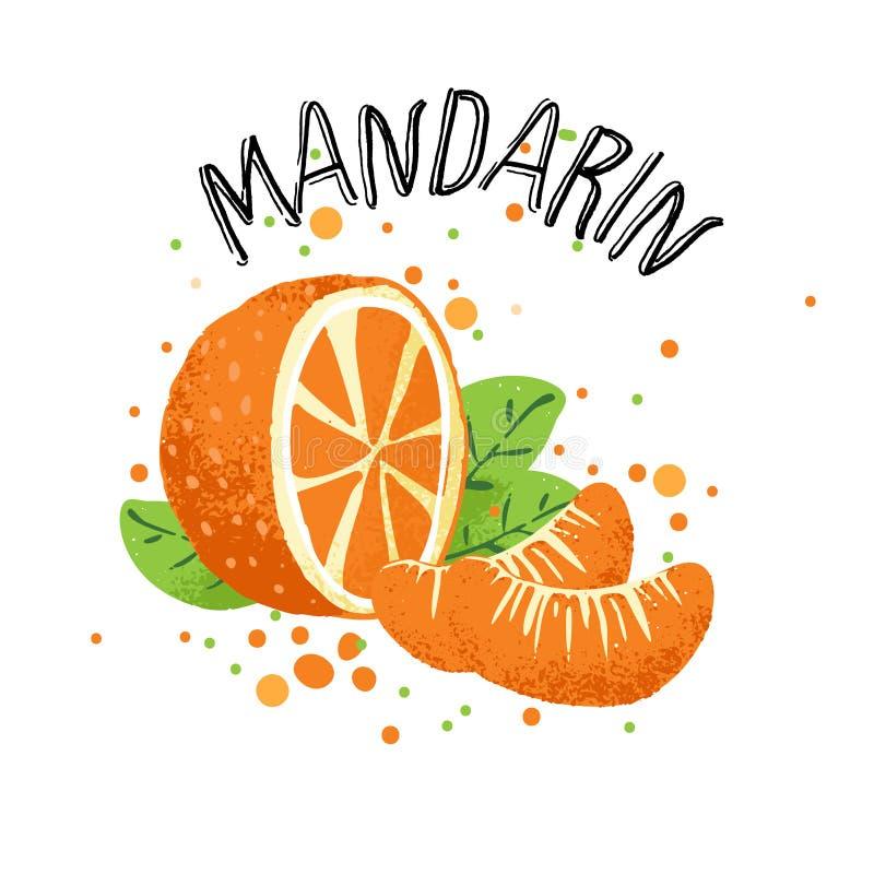 Vector hand draw orange mandarin illustration. Slice of orange tangerine with juice splashes isolated on white royalty free illustration