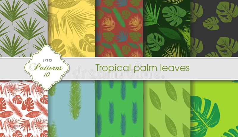 Vector hand drawing set of tropical backgrounds. Palm leaves sam royalty free illustration