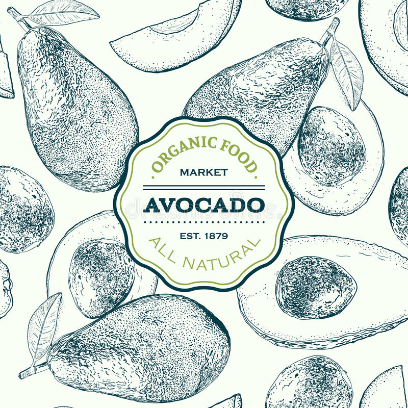 Vector hand drawn avocado seamless pattern. Whole , sliced pieces, half, leaf and seed sketch. Tropical summer fruit stock illustration