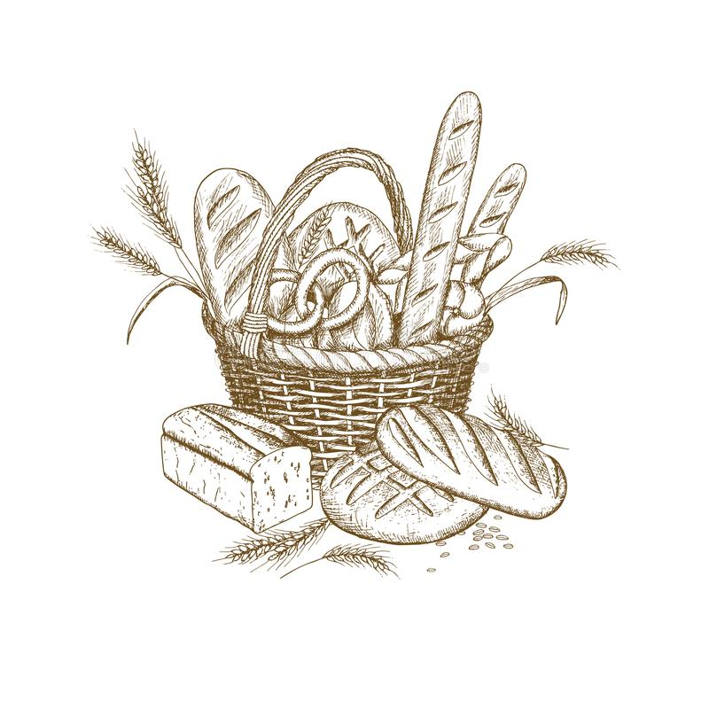 Bread basket. Vector hand drawn bakery illustration. Wicker bread basket illustration vector illustration