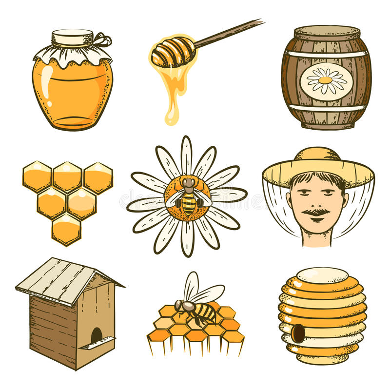 Free Vector Hand Drawn Beekeeping, Honey And Bee Icons Royalty Free Stock Photos - 58460568