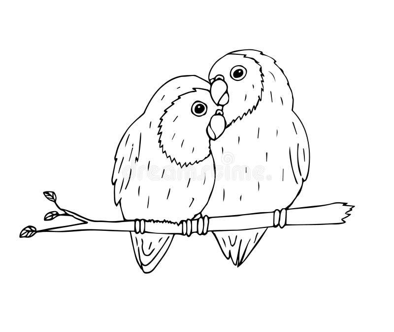 Black Lovebirds Stock Illustrations 125 Black Lovebirds Stock Illustrations Vectors Clipart Dreamstime