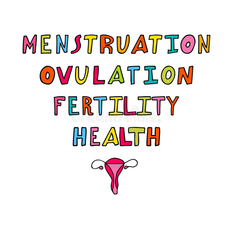 Vector hand drawn cartoon illustration of woman health. Text menstruation, ovulation, fertility and health. Feminine healthcare. Poster with uterus royalty free illustration