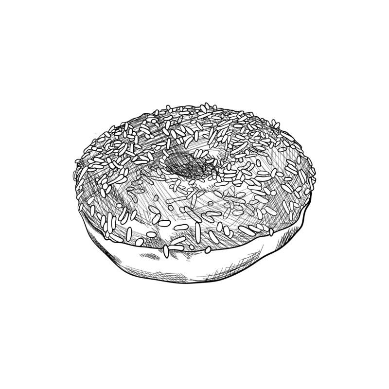 Vector Hand Drawn Donut, Black and White Detailed Sketch, Vintage Drawing, Isolated. vector illustration