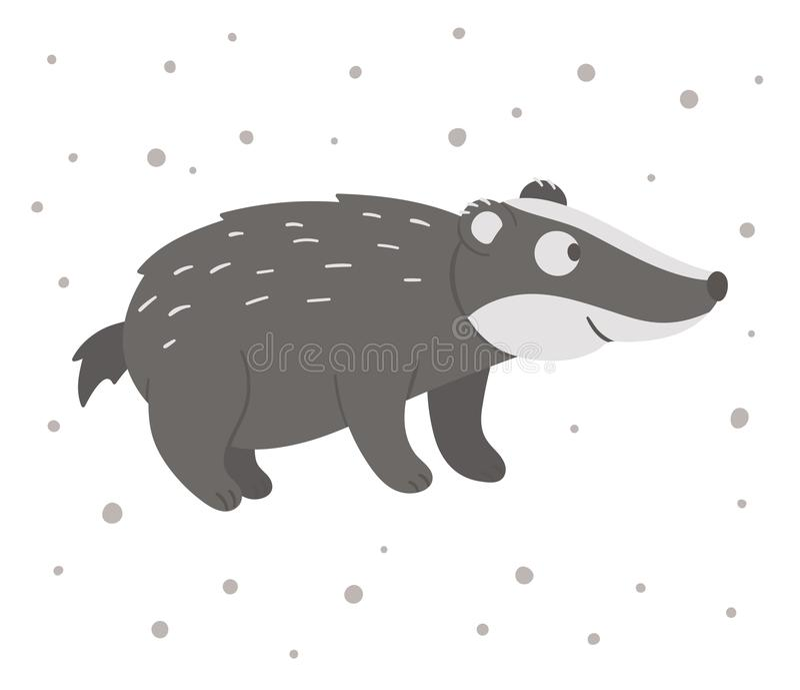 Vector hand drawn flat badger. Funny woodland animal. Cute forest animalistic illustration for children's design, print, vector illustration