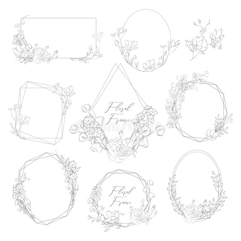 Vector Hand Drawn Frames with Florals and Plants royalty free illustration
