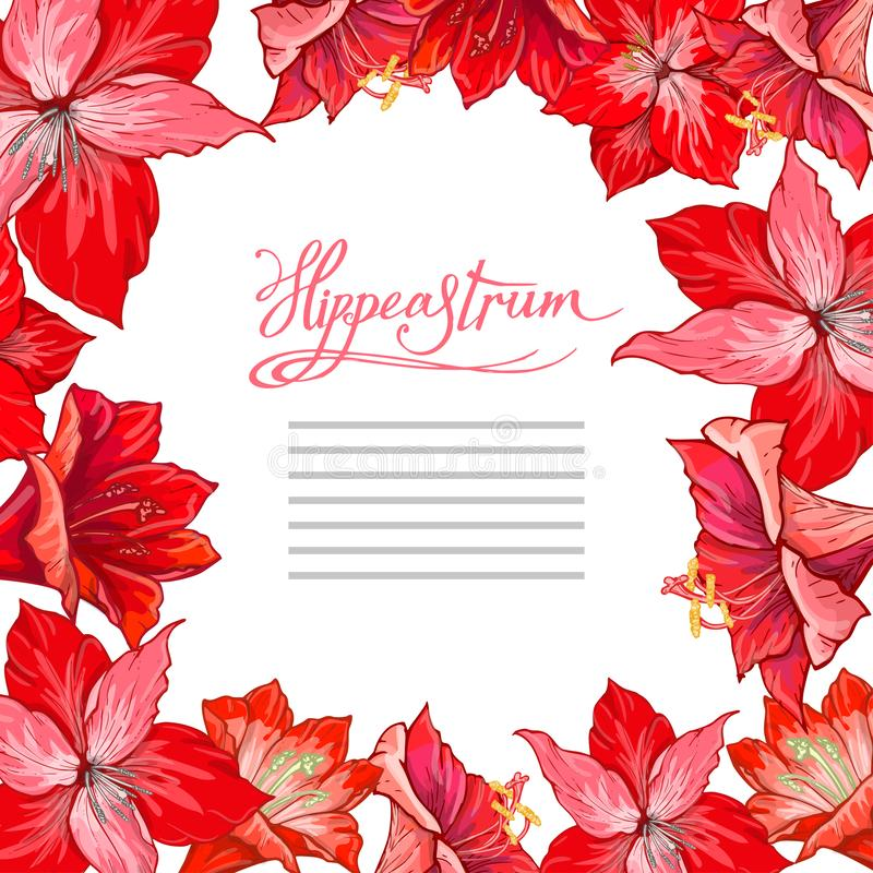Free Vector Hand Drawn Hipeastrum Frame. Suitable For Decoration Greeting Cards For The Christmas And Winter Holidays Stock Photography - 133877872