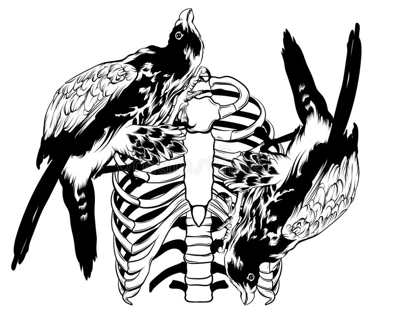 Vector hand drawn illustration of falcon and ribs. Surreal tattoo artwork. Template for card, poster, banner, print for t-shirt, placard stock illustration