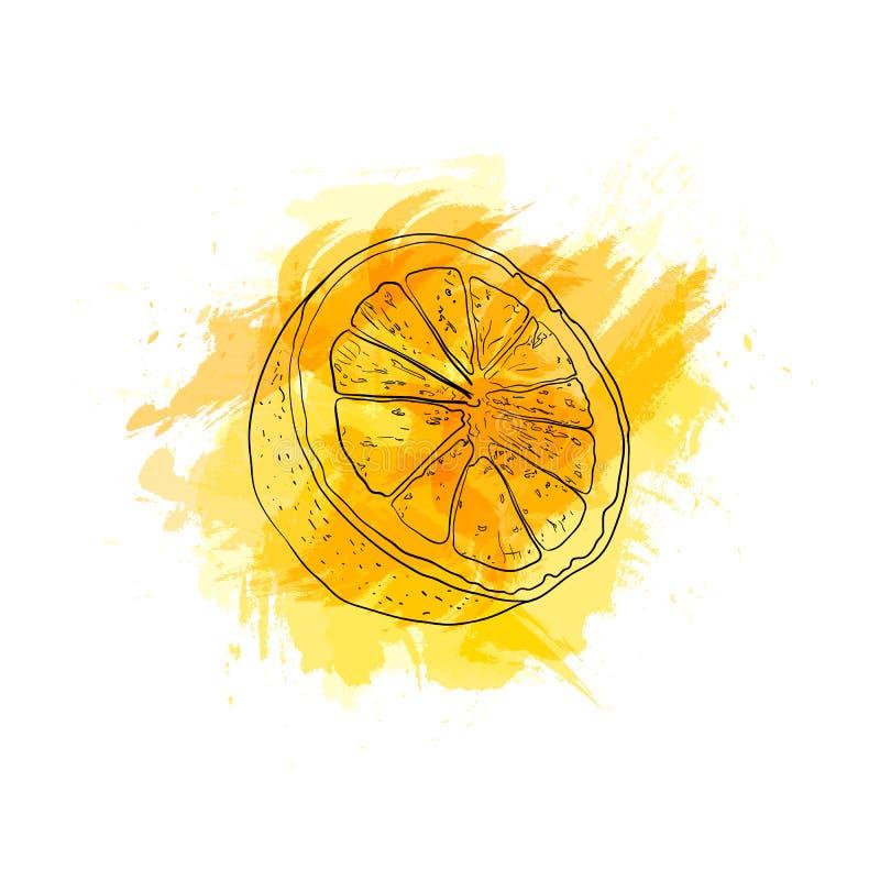 Vector Hand Drawn Lemon Splash, Bright Yellow Color, Drawing on the Abstract Paint Splash, Isolated. Vector Hand Drawn Lemon Splash, Bright Yellow Color stock illustration