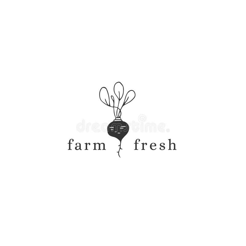 Vector hand drawn logo template, beet. Farm and organic food theme. royalty free illustration