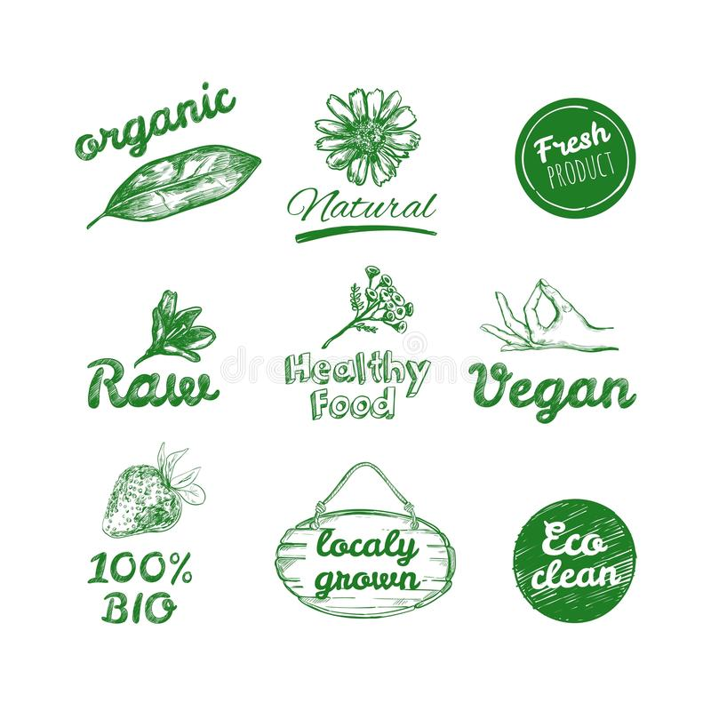 Vector hand drawn logos. Healthy eat logotypes set. Vegan, natural food and drinks signs. Farm market, store icons collection. royalty free illustration