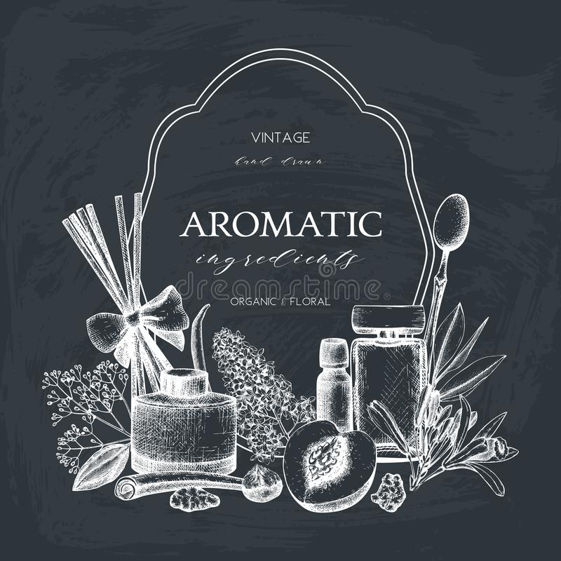Vector Hand drawn Perfumery and cosmetics ingredients illustration. Aromatic and medicinal plant design. Vintage template on chalk. Board royalty free illustration