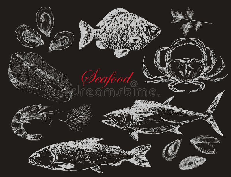 Vector hand drawn seafood set - shrimp, crab, lobster, salmon, oysters, mussel, tuna, trout, carp. mediterranean cuisine royalty free illustration