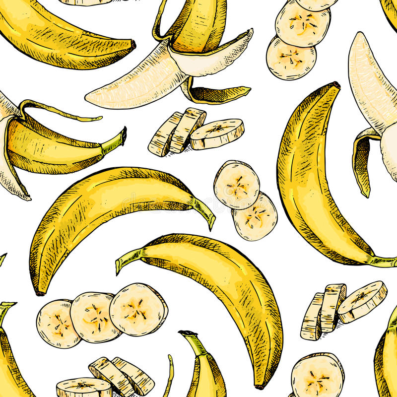 Vector hand drawn seamless pattern of isolated banana. Engraved colored art. Delicicous tropical vegetarian objects. vector illustration