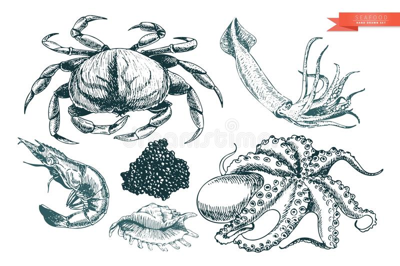 Vector hand drawn set of seafood icons. Crab, shrimp, squid, octopus, caviar and oyster. Engraved art. vector illustration