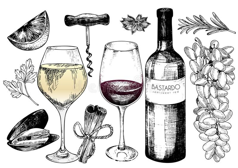 Vector hand drawn set of wine and apetizers. Grape, bottle, wineglass, rosemary, corckscrew, lime, mussel, spices. royalty free illustration