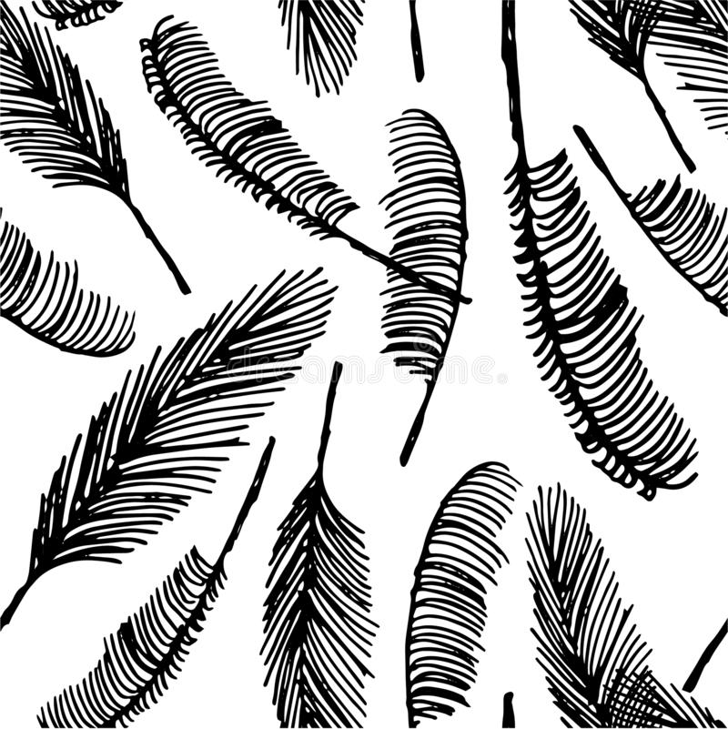 Vector Hand drawn sketch of palm seamless pattern illustration on white background vector illustration