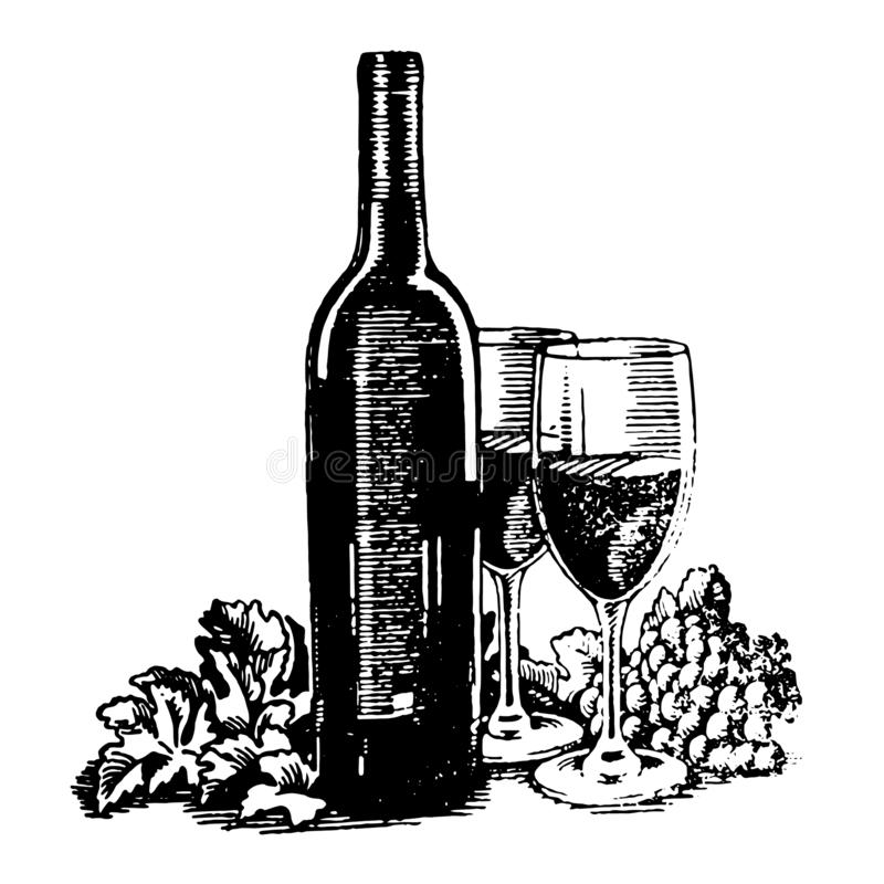 Vector Hand drawn sketch of wine bottle with glass and grapes illustration on white background royalty free illustration