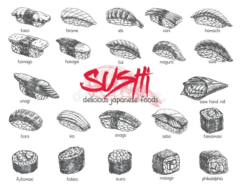 Hand drawn sushi set vector illustration