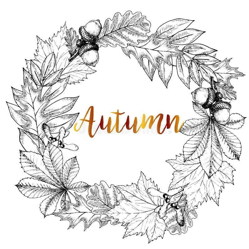 Vector hand drawn wreath of autumn leaves. Oak, maple, chestnut, acorn, seeds. Vintage engraved style. stock illustration